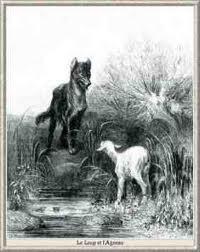 lupo e agnello